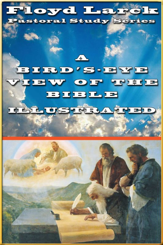 A Bird's Eye View of the Bible Illustrated